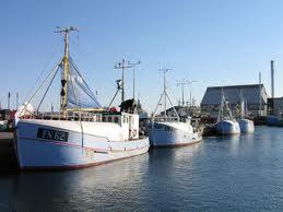 Skagen Fiskeri