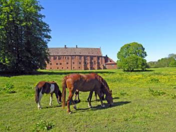 Esrum Kloster Nordsjælland